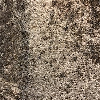 ベロア生地の画像